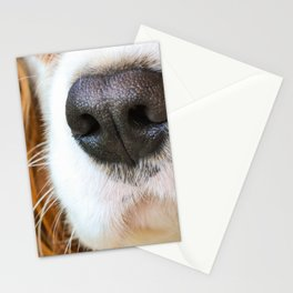 Face of a dog Stationery Cards