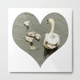 Mother Swan I Metal Print