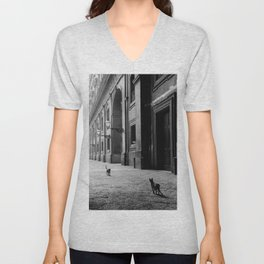Two French Cats, Paris Left Bank black and white cityscape photograph / photography Unisex V-Neck