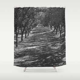 Black & White Almond Orchard Pencil Drawing Photo Shower Curtain