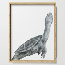 Reaching Turtle Serving Tray