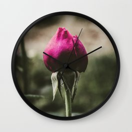 Single pink rose against blurred background. Wall Clock