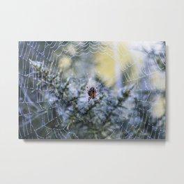 morning dew. Metal Print