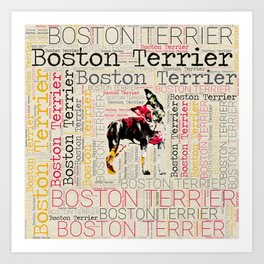 Adorable Boston Terrier Art Print