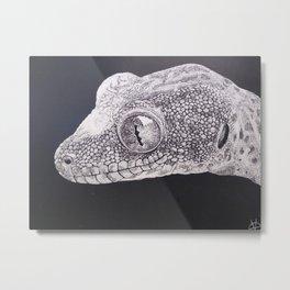 Tokay Gecko Scratchboard Metal Print