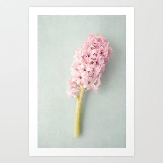 Textured Hyacinth Art Print