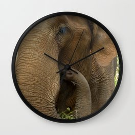 Elephants of Chiang Mai Wall Clock
