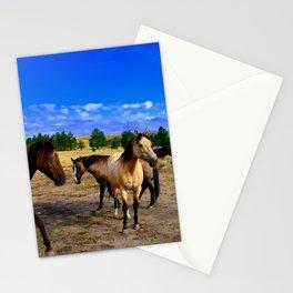 Happy Horses Stationery Cards