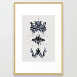 The Panoply Plate 01 Framed Art Print
