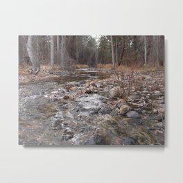 #406 SOUTH BEAR CRK Metal Print