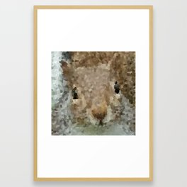 The other faces of Squirrel 2 Framed Art Print