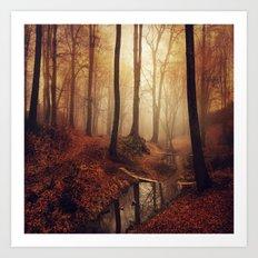 Forest Creek At Sunrise Art Print