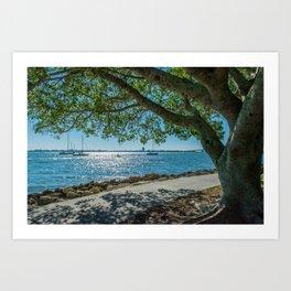 Sarasota Bayfront 3 Art Print