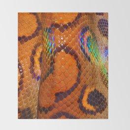 Rainbow Boa Throw Blanket