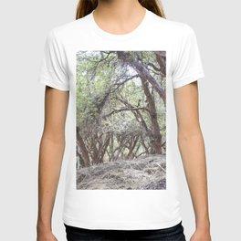 View of Sacsayhuaman trees T-shirt