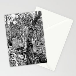 Black and white path Stationery Cards