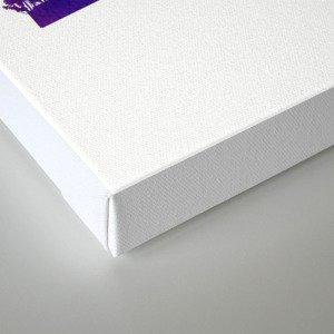 Sydney skyline purple Canvas Print