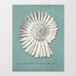 FOSSIL Canvas Print