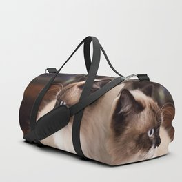 Chocolate Ragdoll Cat Duffle Bag