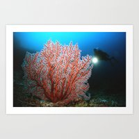 diver Art Prints featuring diver by Anika Wilson