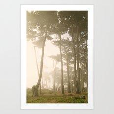 Fairy Forest, San Francisco Art Print