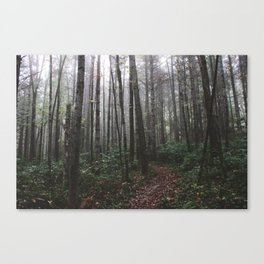 Stevens Glen XVIII Canvas Print