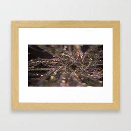 autumn gossamer Framed Art Print