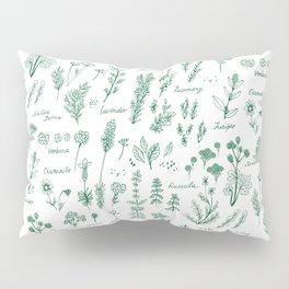 Aromatic herbs Pillow Sham