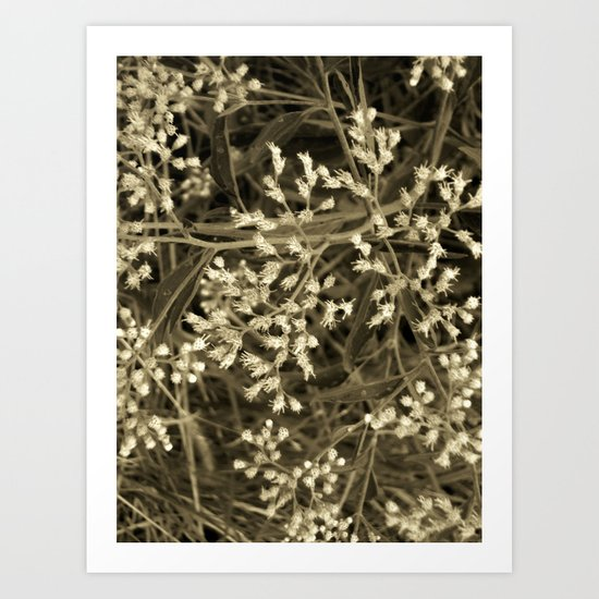 Tiny Fall Flowers Art Print