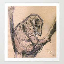Coati Art Print