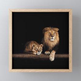 Portrait of Lion Family on dark background - vintage nature photo Framed Mini Art Print