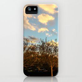 Getty Trees iPhone Case