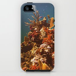 Sea Life iPhone Case
