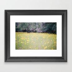 Myakka River State Park Framed Art Print