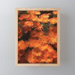 Fall flowers orange flowers Autumm Framed Mini Art Print