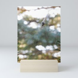 orb weaver spider in autumn bokeh Mini Art Print