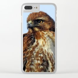 Young Prince of the Skies Clear iPhone Case