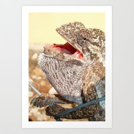 A Chameleon With Open Mouth Art Print