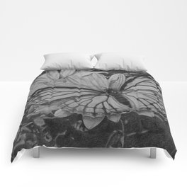 Monarch over Aster Comforters