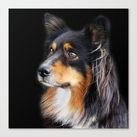 lucy Canvas Prints featuring lucy by ensemble creative