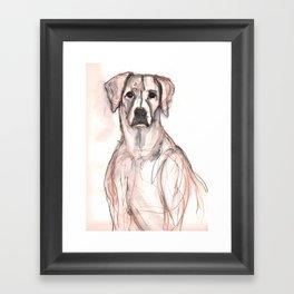 Boxer, watercolor in sepia Framed Art Print