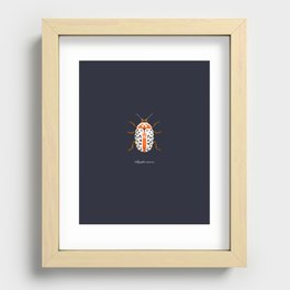 Calligrapha Beetle Recessed Framed Print