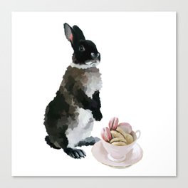 Rex and macaroons Canvas Print