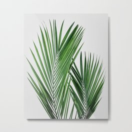 Tropical Leaves | Palm Tree Leaf Photography Metal Print