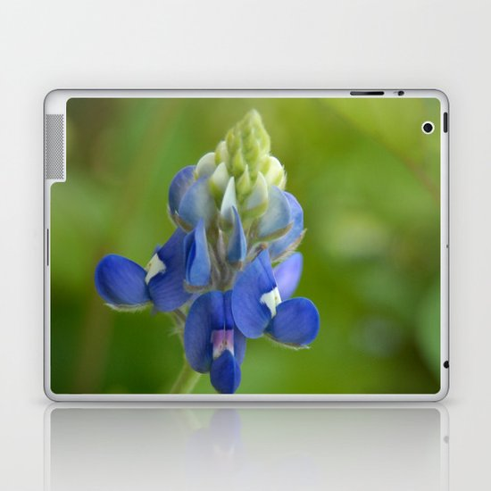 Bluebonnet ~ State Flower of Texas Laptop & iPad Skin