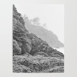 Washington Coast Mist Fog Shoreline Beach Pacific Ocean Long Beach Beards Hollow Forest Northwest Poster