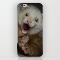 ferret iPhone & iPod Skins featuring Cute Ferret by TheDookingFerret