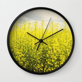 Canola Wall Clock