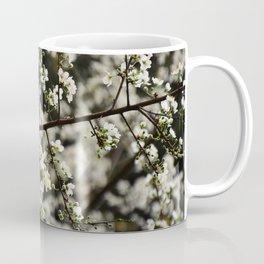 Early Spring White Blossoms Coffee Mug