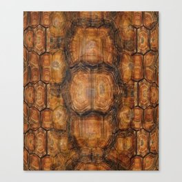 Brown Patterned  Organic Textured Turtle Shell  Design Canvas Print